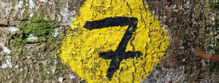 7 grunner til å velge Adventor CRM